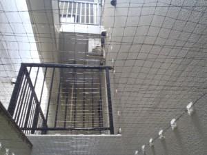 鳩よけネットの設置