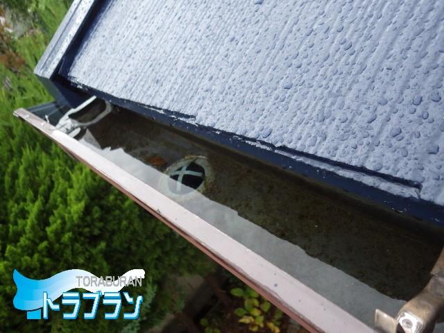 雨水管 屋根 詰まり 雨 トラブラン