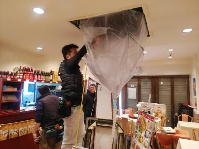 高圧洗浄中 業務用 クリーニング 天井埋込型 トラブラン