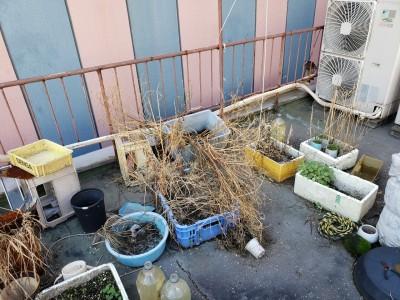 防水工事 店舗ビル 飲食店 神戸市 施工前 トラブラン