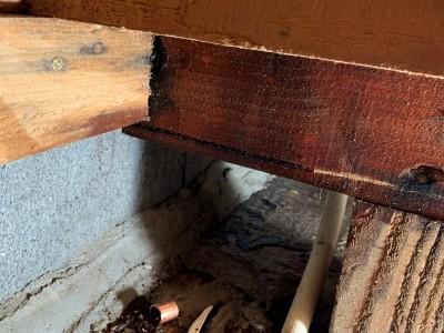 床下調査 漏水 洗面化粧台 交換 給湯管 神戸市 トラブラン
