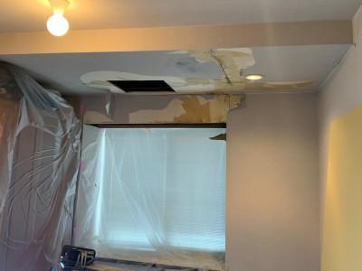 点検口 設置 コンパネ 貼替 雨漏り 修繕 トラブラン