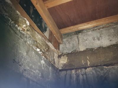 雨漏り修繕 天井貼替 天井上 リフォーム 施工前 トラブラン