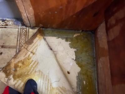 トイレ 床 クッションフロア 水漏れ 神戸市 トラブラン