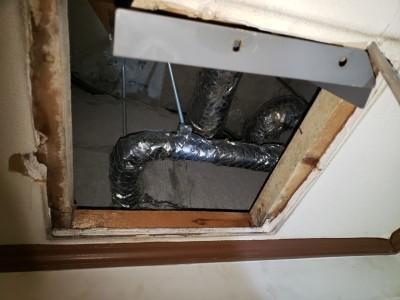 漏水修繕 4階天井 換気扇取外し 開口 現場調査 トラブラン 神戸市