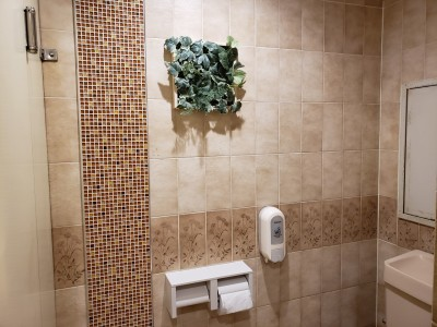 トイレ リフォーム インテリア フェイクグリーン 神戸市 トラブラン