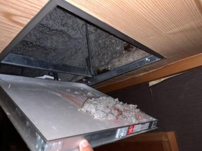 点検口内 漏水跡 確認 被害状況 神戸市 トラブラン