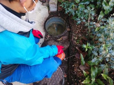 排水桝 詰まり 高圧洗浄 作業前 神戸市 トラブラン