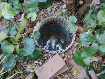 排水桝 花壇内 塩ビマス 詰まり 高圧洗浄 トラブラン 神戸市