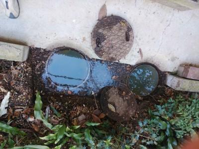 戸建 排水詰り 溢れ マス 排水管 神戸市 長田区 トラブラン