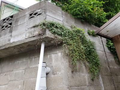現場調査 水漏れ コンクリート桝 交換工事 垂水区 トラブラン