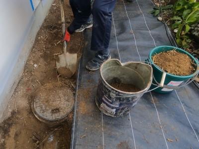 土の撤去 根っこの撤去 手掘り作業 コンクリート桝取替え 神戸市 トラブラン