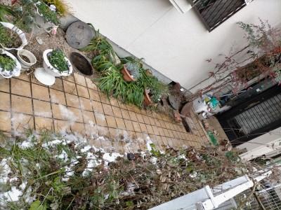 コンクリート桝 詰まり 住宅 戸建て 神戸市 トラブラン