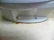 便器と床の隙間から水が漏れている